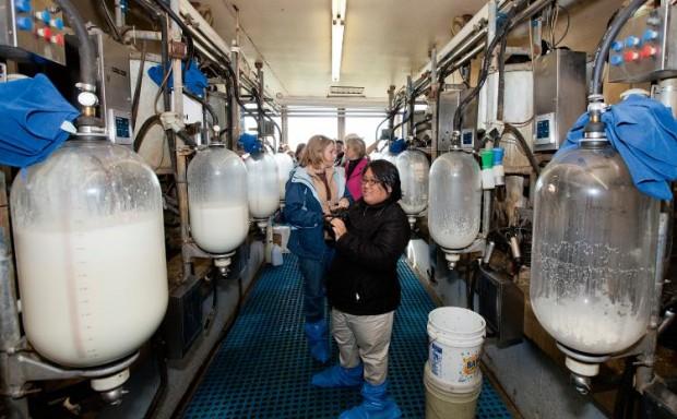 Illinois Farm Families visit a dairy farm