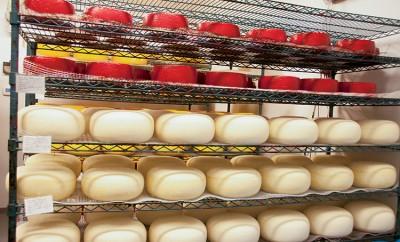 Ludwig Farmstead Creamery