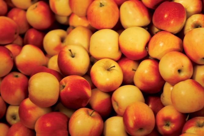 Trilla Orchard