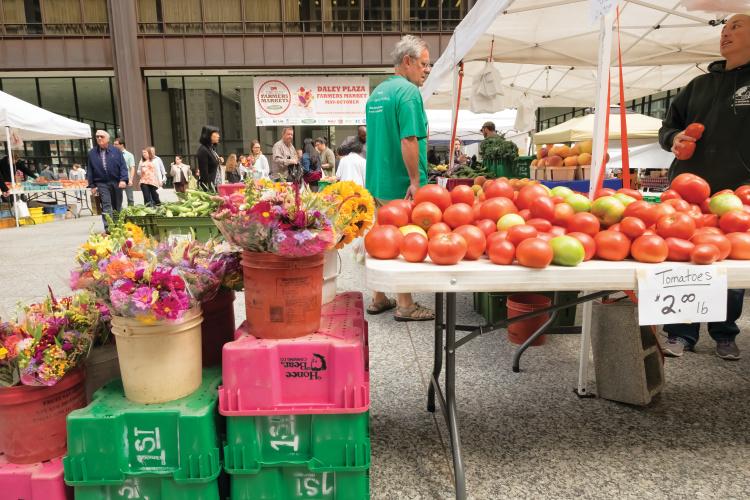 Illinois Farmer's Markets