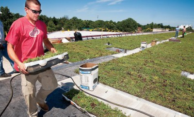 Green Roofs at the Illinois Department of Agriculture