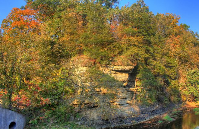 bluffs_and_trees_at_apple_river_canyon_state_park_illinois_593453