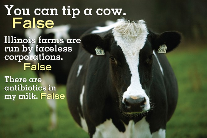 Cow tipping and other farming myths