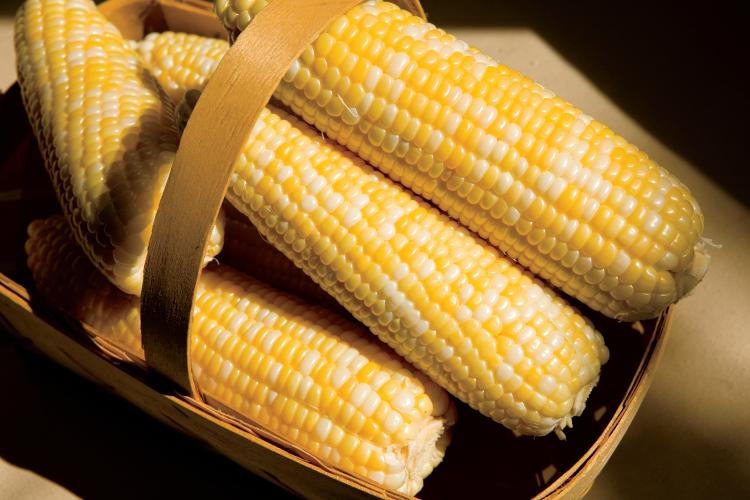Sweet corn recipes