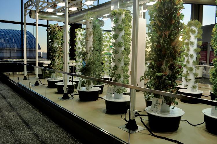 Illinois Farm Bureau Partners Summer 2012 vertical gardens