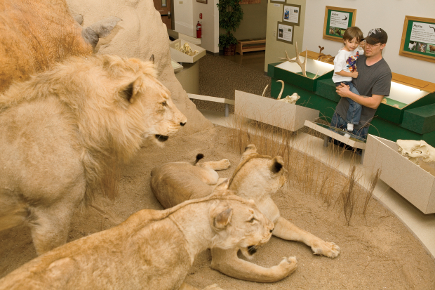 Midwest Museum of Natural History in Dekalb County