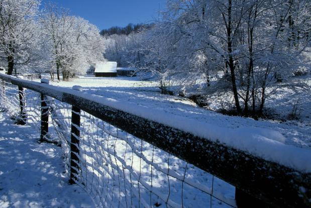 Farmers in the Winter