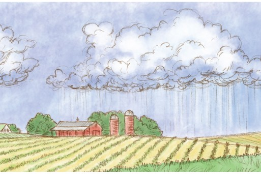 Farming and weather