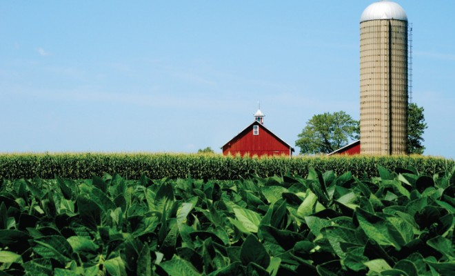 Illinois soybean farm landscape red barn and silo