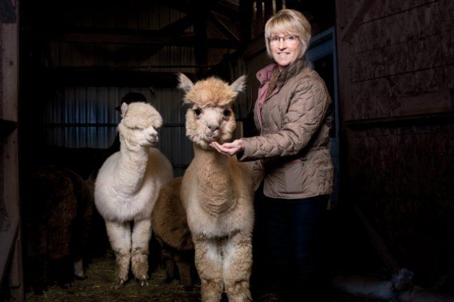 Illinois alpaca farms