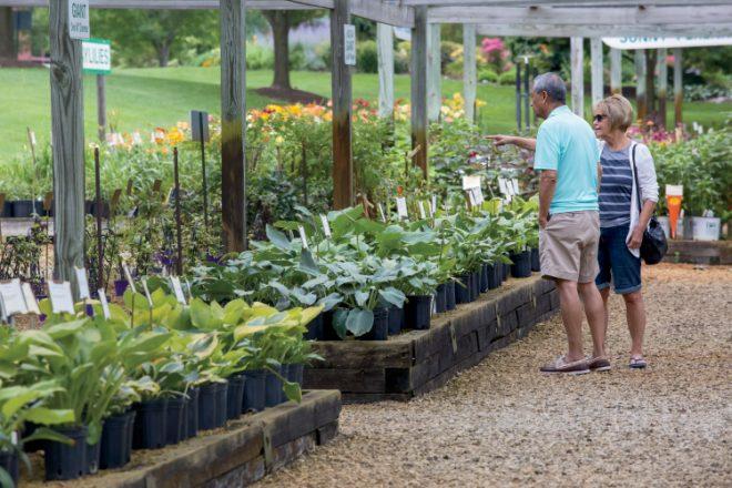 Hornbaker Gardens
