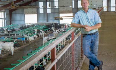 Digital dairy farm