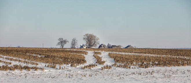 IL in winter