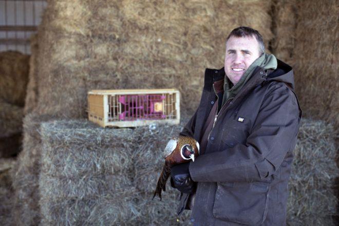 Sullivan Pheasant Farm