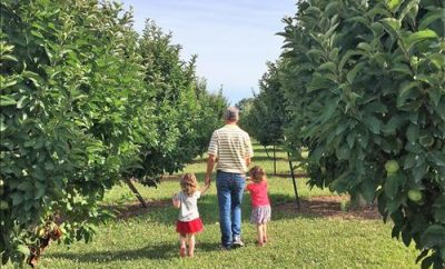 Liberty Apple Orchard