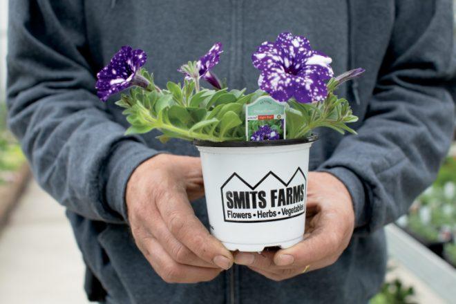 Smits Farms