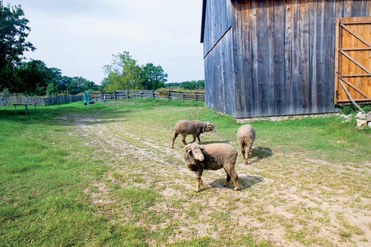 Garfield Farm and Inn Museum