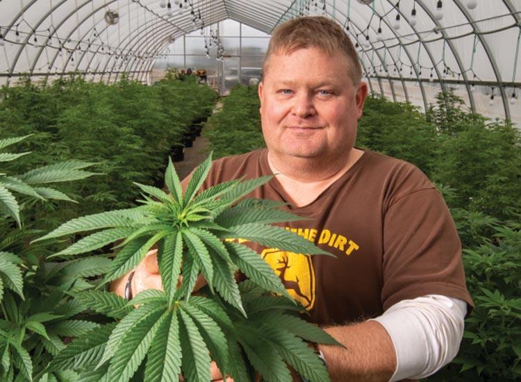 Illinois hemp industry
