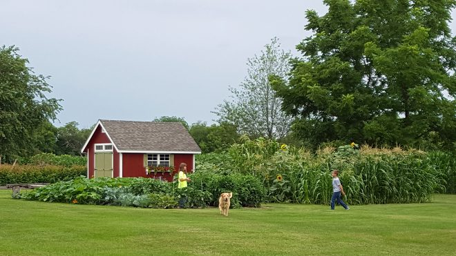 joanie garden