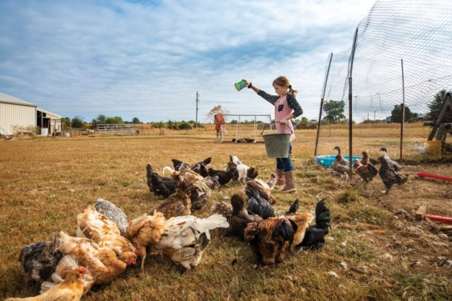 Ryder Family Farm