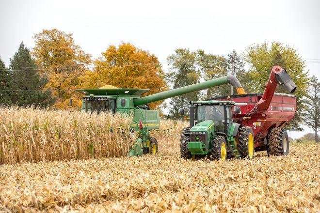 cr_Corn Harvest Tazewell 10_19 125