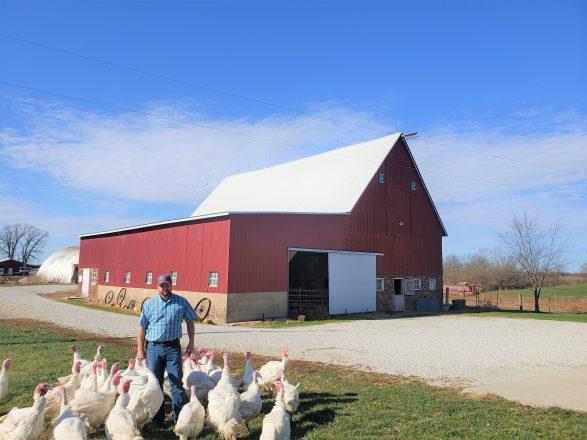 photo_WS_SchoenJ_turkeys_barn