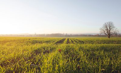 farmland conservation